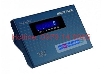 kigbird2-750x550